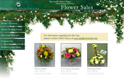 Horticulture Flower Sales